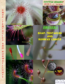 Cover DVD Snap-Tentacles & Runway Lights