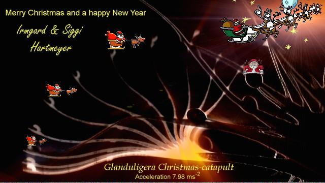 Kinematik-leuchtet_Weihnacht_english2012.jpg